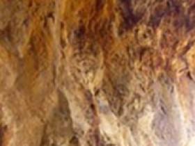 古铜泥照片