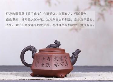 朱建伟紫砂壶作品 望子成龙壶 原矿清水泥 380CC 研究员级高级工艺美术师 望子成龙紫砂壶价格,多少钱