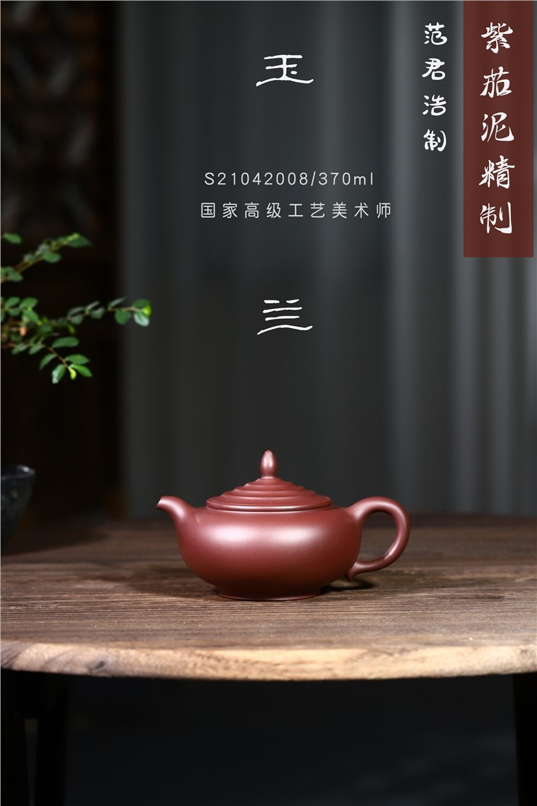 范君浩作品 玉兰图片
