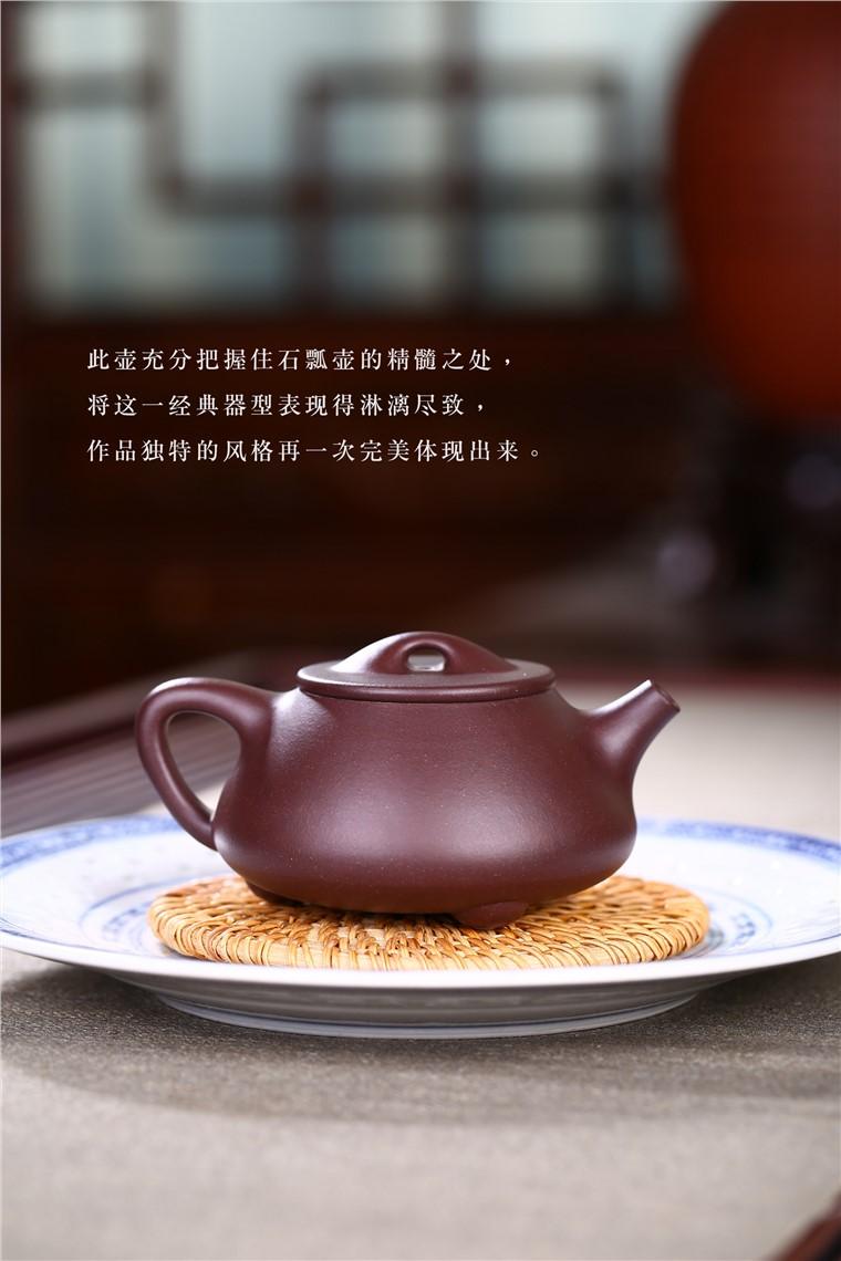 吴赛春作品 景舟石瓢图片